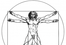 uomo vitruviano - wikipedia